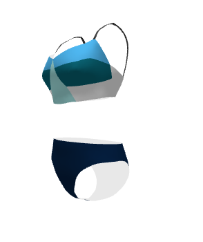 Digital Mock up of bikini